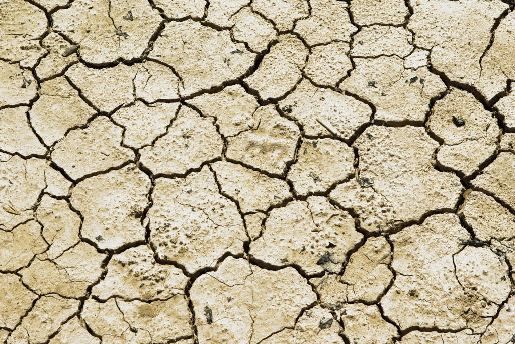 drought-711651_1920