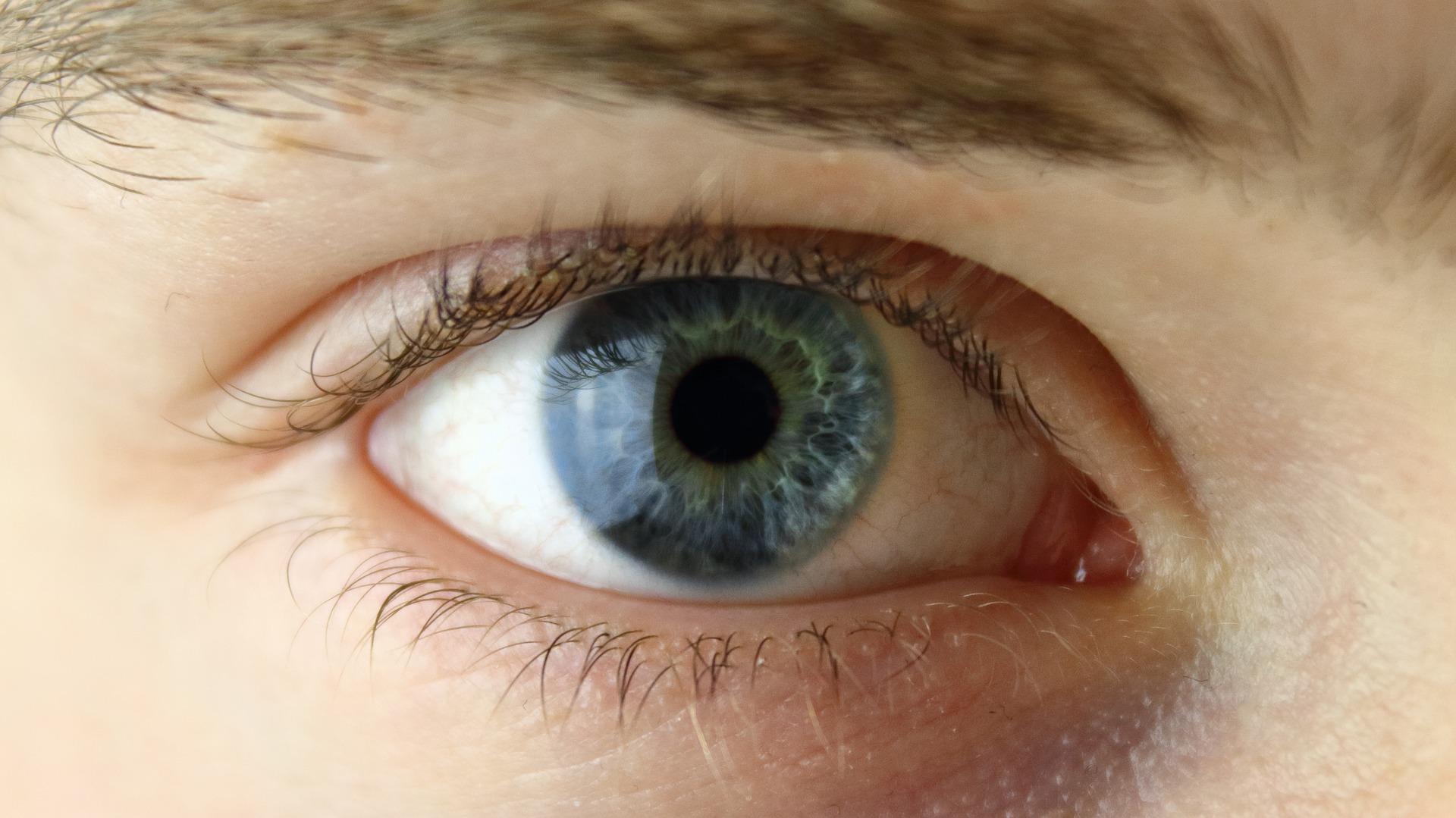 eye-2154384_1920 - kopie